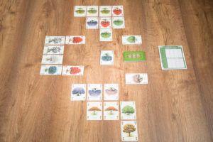 Arboretum, 7 mejores juegos de mesa para jugar en primavera