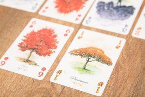 Arboretum, juegos de mesa para cenas de solteras