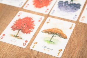 Arboretum, juegos de mesa para cuando lo dejas con tu novio